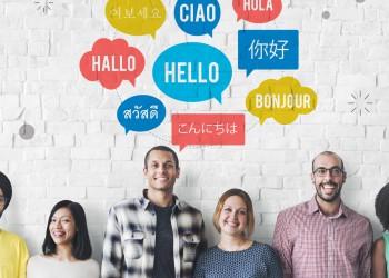طراحی سایت چند زبانه در وبیکا